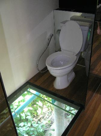Toilet showing images for kinky photo 2